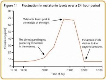 Secrección de melatonina a lo largo del día