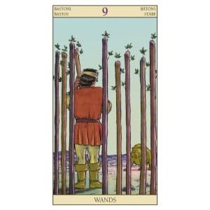 10-Tarot of New Vision