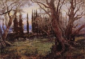 Olivos y Cipreses en Corfú.