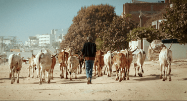 Mati Diop. Mille soleils. Película, 2013