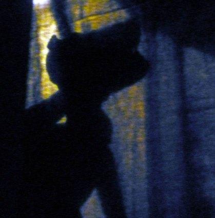 """""""L'ombra del lupo"""" di Tanti Cosi Progetti a Casa Varoli"""