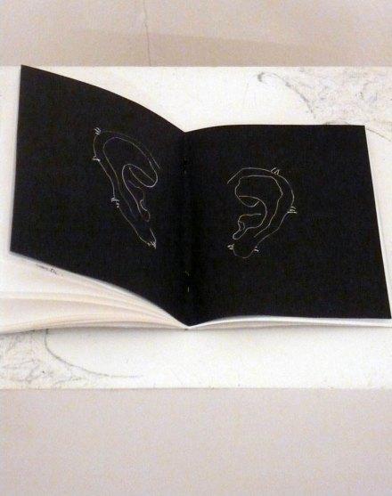 Antonella Piroli – Selvatico TRE – Il buco dentro agli occhi o il punto dietro la testa – Bagnacavallo Museo Civico delle Cappuccine