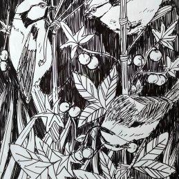 n. 65 Reve+, Senza titolo, Inchiostro su carta, 24x17 cm