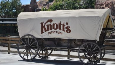 Photo of KNOTT'S BERRY FARM INVITES YOU TO CELEBRATE LABOR DAY WEEKEND ON THE FARM