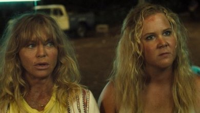 """Photo of GOLDIE HAWN TO RECEIVE """"2017 CINEMA ICON AWARD"""""""