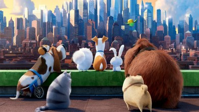 The Secret Life of Pets: Off the Leash! Ride
