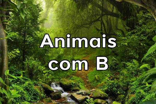 Animais com B