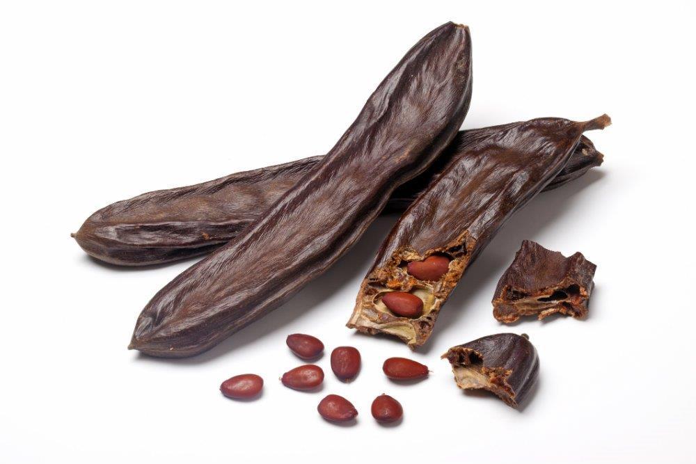Algarrobo Fruta