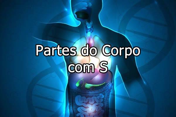 Partes do Corpo com S