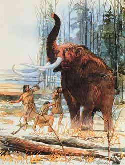 Resultado de imagem para paleoindian