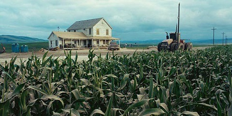 Cornfields planted in Oregon for 'Interstellar'