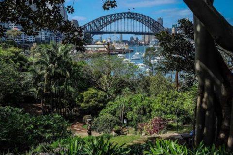 View from Wendy's Secret Garden