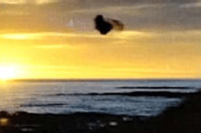 Roy Manifold UFO photo