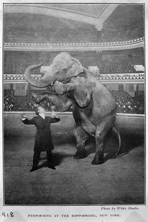 Houdini appears at the Hippodrome