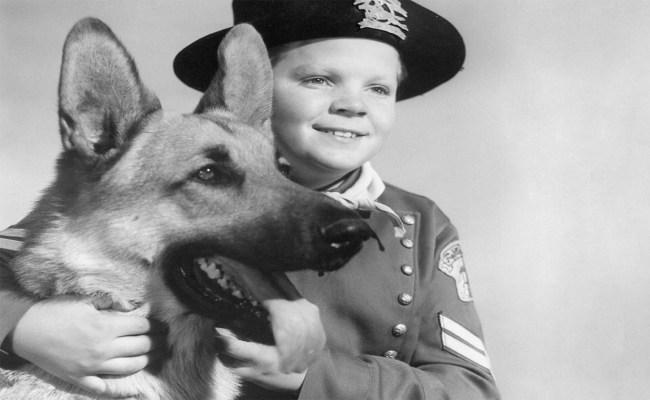 Best animal actors: Rin Tin Tin