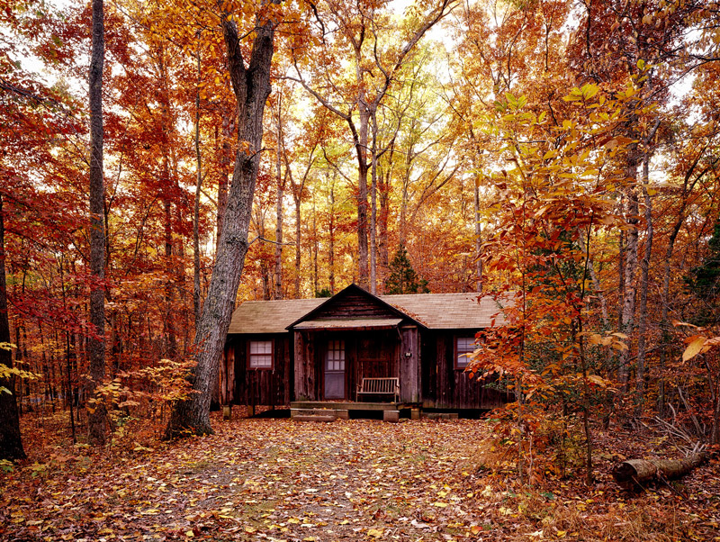 A cabin surrounded by trees in the fall