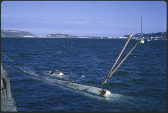 "A vessel sunk in Evans Bay after the ""Wahine"" storm"