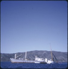 The salvage vessel Holmpark by the TEV Wahine wreck