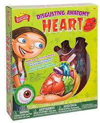 Disgusting Anatomy Heart, Kit, Heart, Science