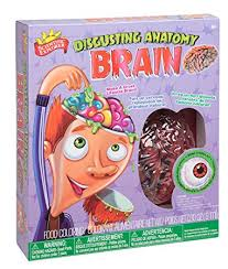 Disgusting Anatomy Brain, Science, Kit, Brain