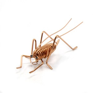 Weta, John Rook, Copper