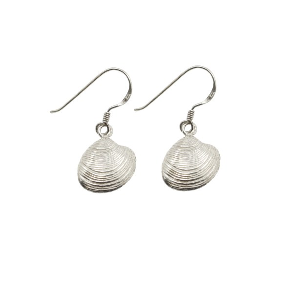 Sea Shell Earrings