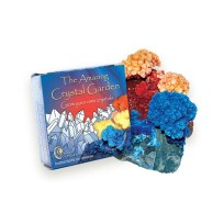 Amazing Crystal Garden Kit