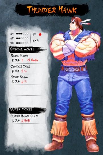 Thunder-Hawk-Musha-Shugyo-RPG