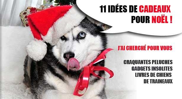 11 Ides De Cadeaux De Nol