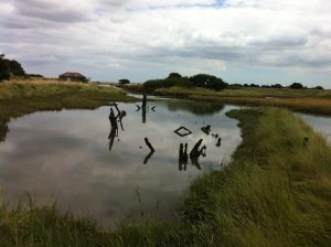 Essex Saltings flooding