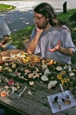 Leon puzzling over mushrooms