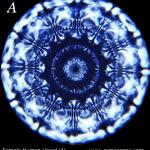 CIMATICA – il Cymascope e la forma delle vocali