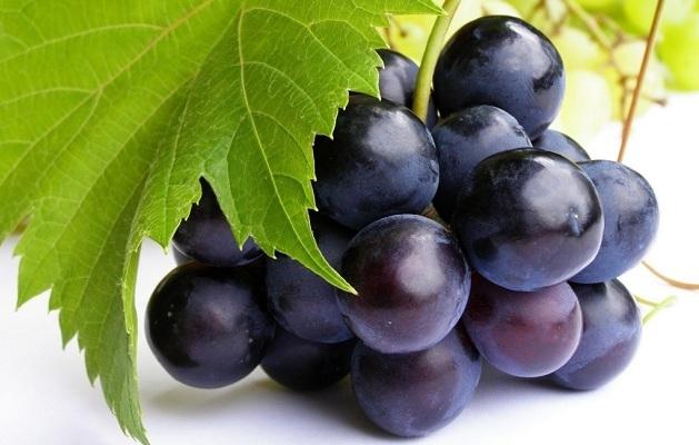 propiedades-de-las-uvas1