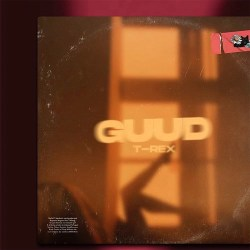 Toy Toy T-Rex – GUUD