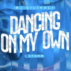 DJ Siliveli – Dancing On My Own (feat. Storm)