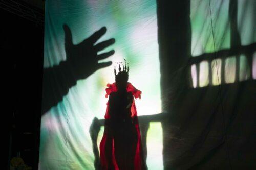 Gulliver- Teatro Coccia (2)