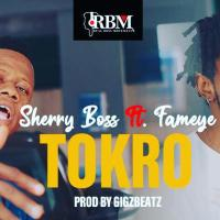 Sherry Boss - Tokro feat. Fameye (Prod By Gigzbeatz)