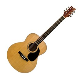 Beaver Creek BCTF101 Folk Guitar + Bag