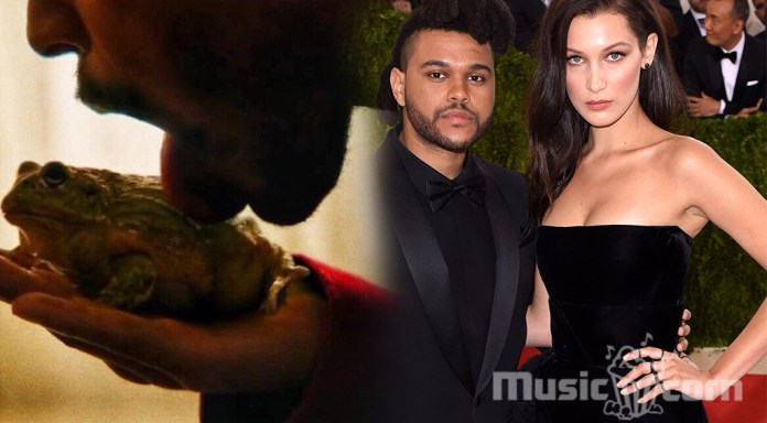 The weeknd's relationship with supermodel Bella Hadid.