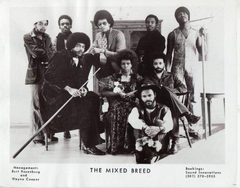 The Mixed Breed (1970s Press Photo)