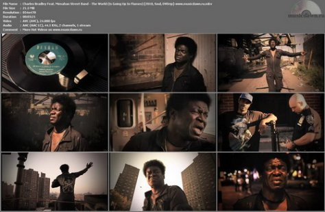 Charles Bradley Feat. Menahan Street Band - The World (Is Going Up In Flames) 2010, Soul, DVDrip