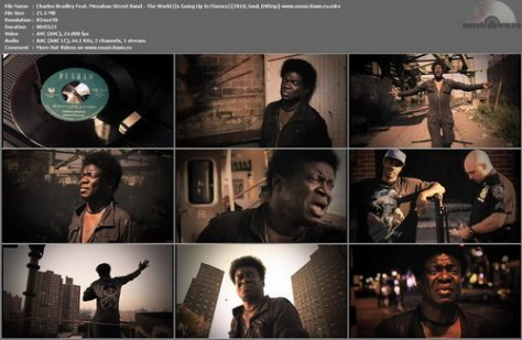 Charles Bradley Feat. Menahan Street Band – The World (Is Going Up In Flames) [2010, DVDrip] Music Video