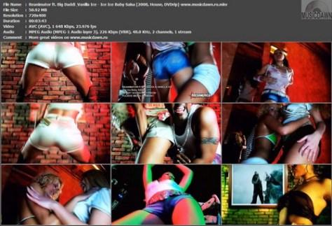 Reanimator ft. Big Daddi & Vanilla Ice - Ice Ice Baby Salsa (2008, House, DVDrip)