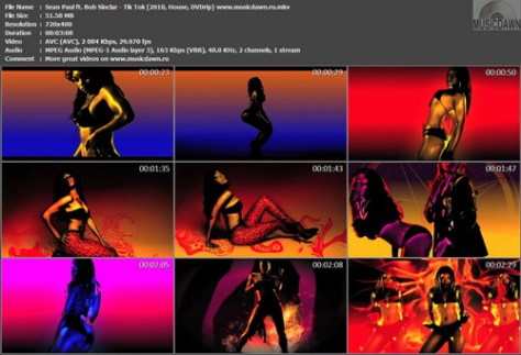 Sean Paul ft. Bob Sinclar - Tik Tok (2010, House, DVDrip)