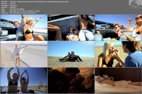 Tim Berg – Seek Bromance (Director's Cut) [2010, HD 720p] Music Video (Re:Up)