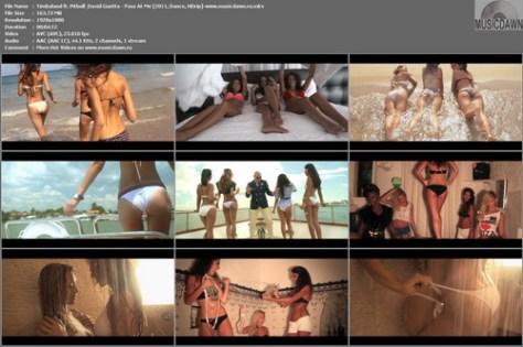 Timbaland ft. Pitbull & David Guetta – Pass At Me [2011, HD 1080p] Music Video