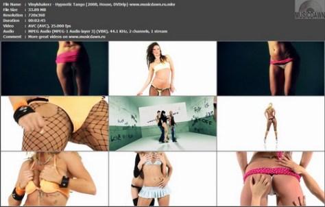 Vinylshakerz - Hypnotic Tango (2008, House, DVDrip)