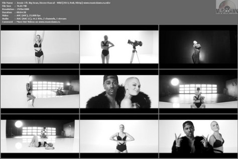 Jessie J ft. Big Sean, Dizzee Rascal - Wild [2013, RnB, HD 1080p]