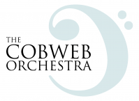 Cobweb Orchestra: new beginners' orchestra
