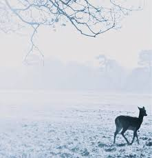 The Sixteen Choral Pilgrimage: The Deer's Cry